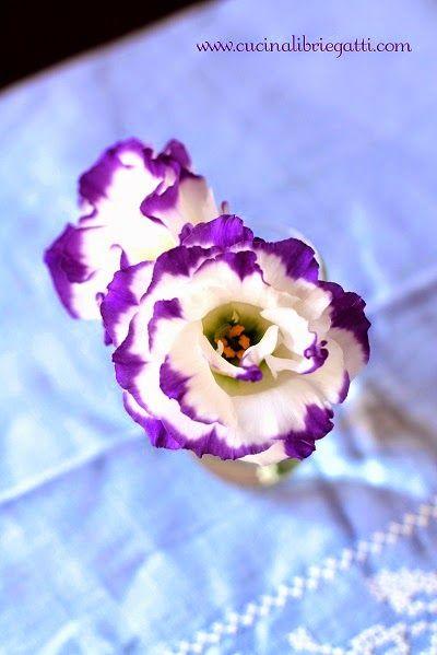 fiori auguri